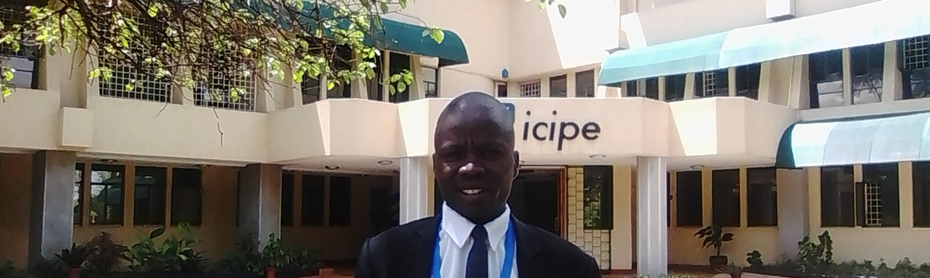 BCDO Participates in the 2019 ICIPE Workshop